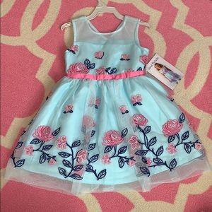 Beautiful Girl's Dress Size 4t